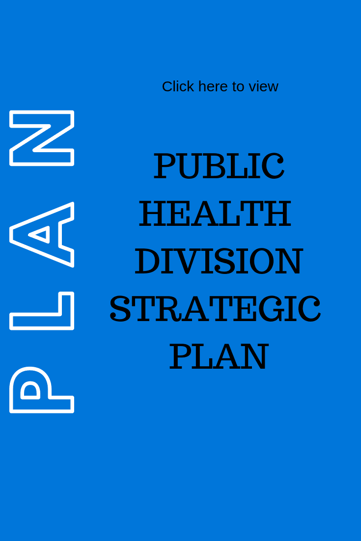 Public Health Division Strategic Plan